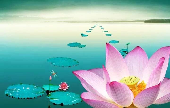 Oán hận không thể nào thay đổi được thực trạng, mà tiếp tục cố gắng mới có thể mang đến hy vọng.