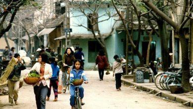 """Photo of Tản mạn về người Việt: Sự tệ hại của văn hóa """"khôn lỏi"""""""