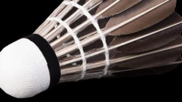 tao vat qua cau long 370x208 - Bạn có biết: quả cầu lông là một trong những tạo vật tinh tế nhất trên đời