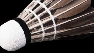 Photo of Bạn có biết: quả cầu lông là một trong những tạo vật tinh tế nhất trên đời