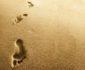 IMG 9951 85x70 - Đi trên con đường ' Bùn Đất ' ta để lại dấu vết đánh dấu cho giá trị của chính ta. Đi trên con đường bằng phẳng ta không để lại gì.