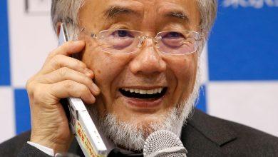 """Photo of Chủ nhân Nobel Y học 2016 không """"đi theo lối mòn"""""""