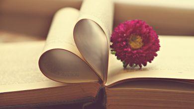 Photo of 5 quyển sách ngôn tình đẫm nước mắt