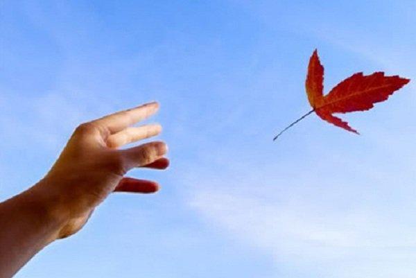 hoc cach chap nhan 1 Học cách chấp nhận để cuộc đời không còn vướng bận