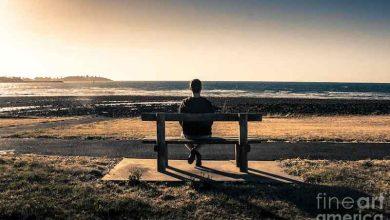 Photo of Những lí do vì sao người sống hướng nội tạo nên các mối quan hệ sâu sắc hơn với người khác