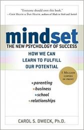 sach mindset Bạn sẽ ước mình biết điều này từ khi còn trẻ: Những trích dẫn truyền cảm hứng trong các cuốn sách nổi tiếng