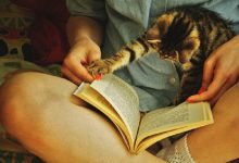 """Photo of Mẹo đọc lướt một cuốn sách mà """"mọt"""" không nên bỏ qua"""