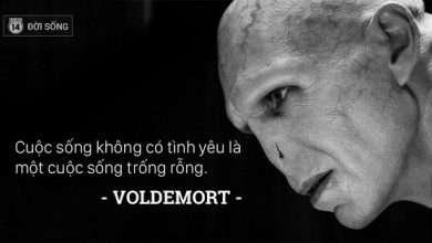 Photo of Những bài học cuộc sống giản dị mà đắt giá từ các nhân vật trong Harry Potter