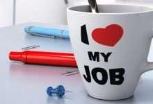 Photo of Công việc là thứ ai cũng có nhưng nghề nghiệp lại là điều chẳng mấy ai dám tìm