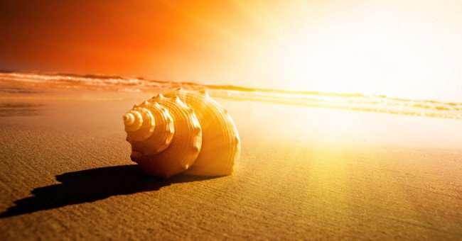emotion 11 Bài học thay đổi quan niệm sống và có được hạnh phúc từ thiền sư Thích Nhất Hạnh