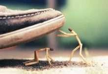 Photo of Mặt trái của nhân tính: Bạn càng nhân nhượng, người khác càng lấn tới