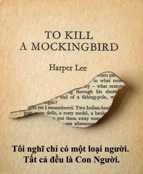 """giet con chim nhai quote 19 20 câu nói hay nhất của nữ nhà văn """"Giết con chim nhại"""""""