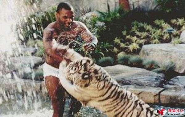 nhan vat mike tyson 16 Cuộc đời của võ sĩ thép Mike Tyson