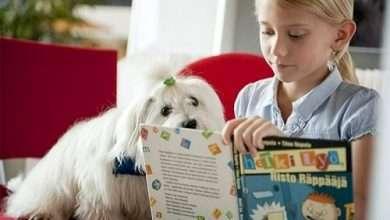 Photo of 3 sách hay về giáo dục Phần Lan, hình mẫu giáo dục của mọi quốc gia trên thế giới