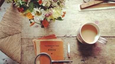Photo of 15 cuốn sách hay về tình yêu khuyên đọc trong đời