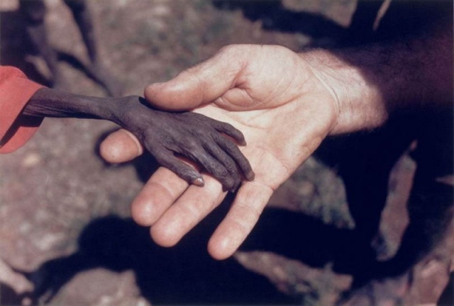 50 buc anh cam dong 16 50 bức ảnh có sức ảnh hưởng mạnh mẽ làm thay đổi cả thế giới