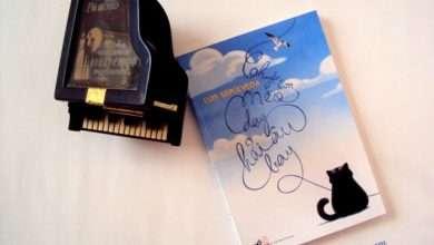 """Photo of 7 bài học cuộc sống quý giá từ """"Chuyện con mèo dạy hải âu bay"""""""
