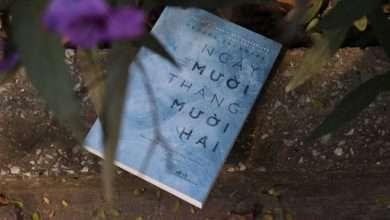 Photo of Những cuốn sách hay nhất viết về tháng Mười hai