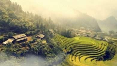 Photo of 8 cuốn sách hay về Việt Nam