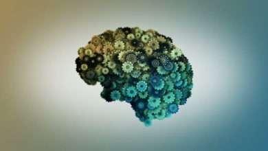 Photo of 9 cuốn sách rèn luyện trí não giúp tận dụng tiềm năng trí tuệ của bạn