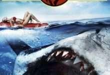 Photo of Cá mập thời tiền sử