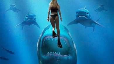 Photo of 11 phim hay về cá mập khuyên xem