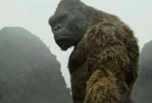 Photo of 5 phim hay về King Kong xứng đáng tuyệt phẩm
