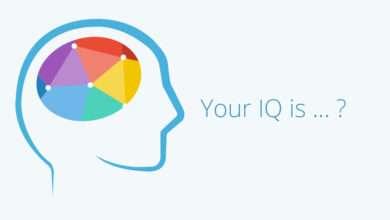 Photo of 7 quyển sách hay về IQ cải thiện trí nhớ và tư duy