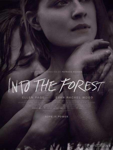 phim Into the Forest 2016 7 phim hay về rừng xanh hùng vĩ