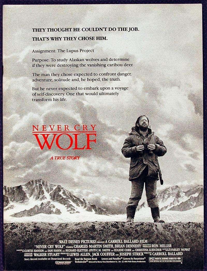 phim Never cry wolf 5 phim hay về loài sói khôn ngoan và mạnh mẽ