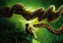 Photo of 7 phim hay về rừng xanh hùng vĩ