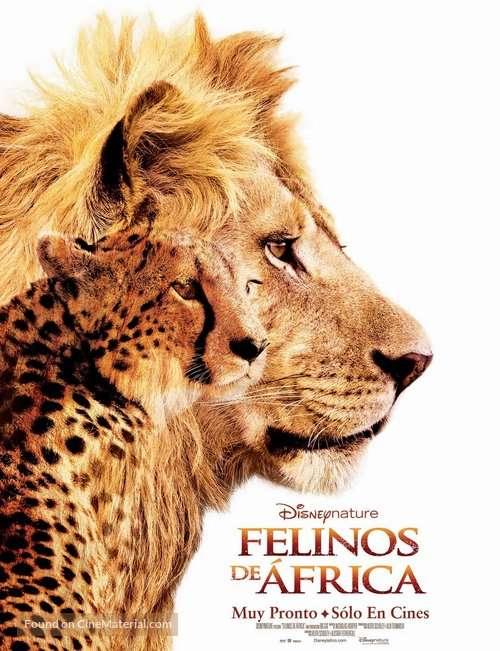 phim African Cats 7 phim hay về loài sư tử đáng xem