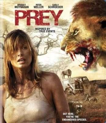 phim Prey 2007 7 phim hay về loài sư tử đáng xem