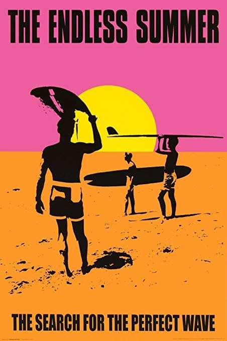 phim The Endless Summer 12 phim hay về Châu Phi đáng xem