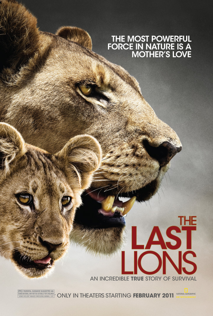 phim The Last Lions 2011 7 phim hay về loài sư tử đáng xem