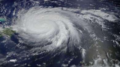 Photo of 7 phim hay về bão đầy kinh hoàng