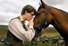 Photo of 9 phim hay về loài ngựa truyền tình yêu cuộc sống cho mọi người