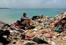 Photo of 6 phim hay về ô nhiễm môi trường cảnh tỉnh loài người