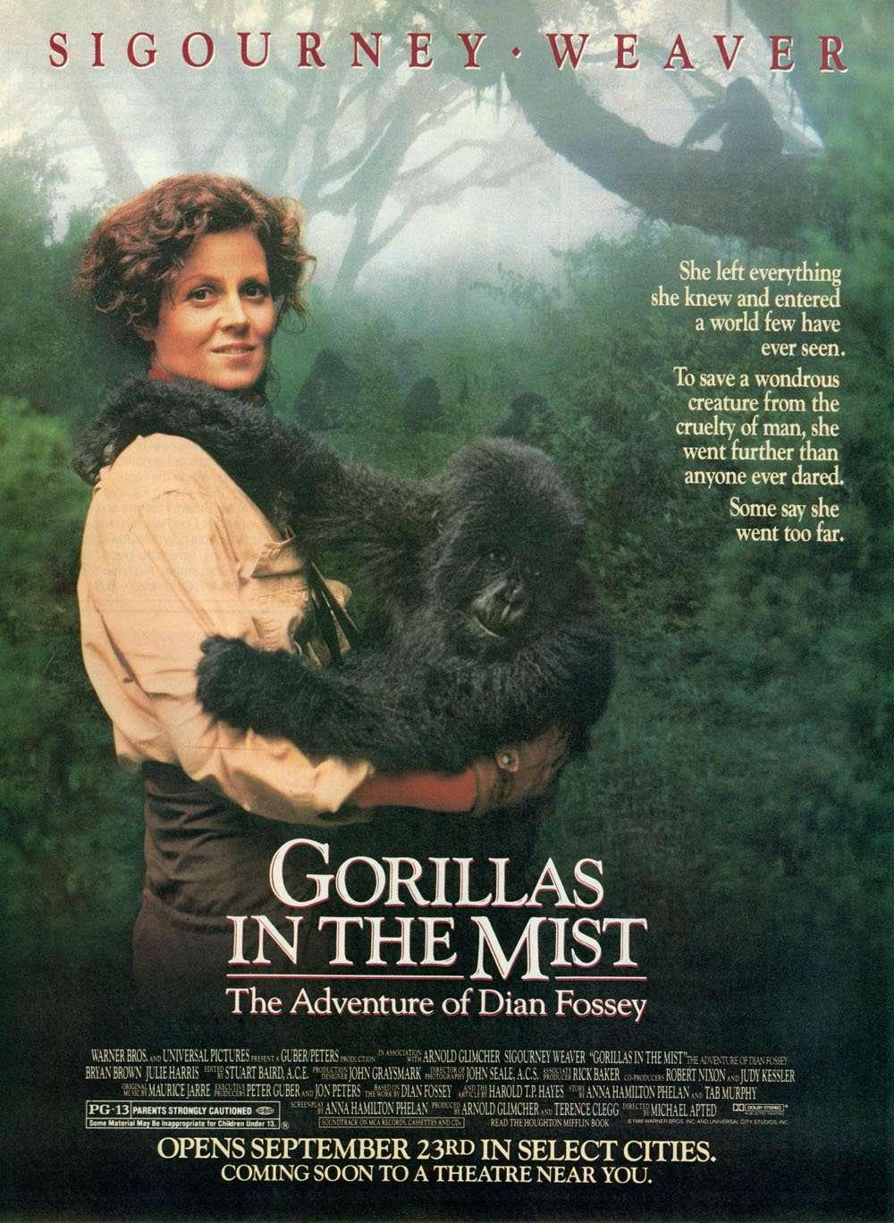 phim Gorillas in the Mist 12 phim hay về Châu Phi đáng xem