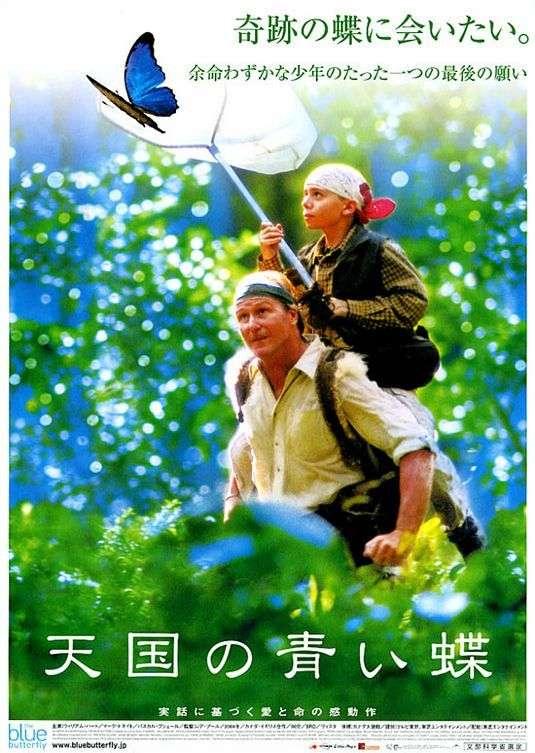 phim The Blue Butterfly 3 phim hay về loài bướm đầy thú vị
