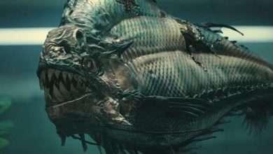 Photo of 4 phim hay về cá Piranha hung tợn