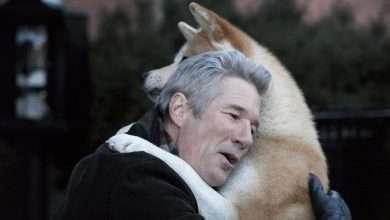 Photo of 9 phim hay về loài vật đáng xem trong đời