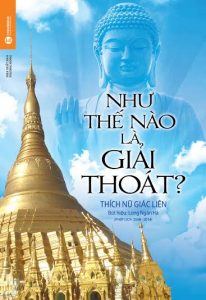 sach nhu the nao la giai thoat 206x300 24 quyển sách tôn giáo hay, giản dị, dễ hiểu và dễ áp dụng