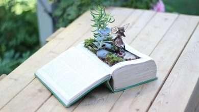 Photo of 14 cuốn sách làm vườn hay được trình bày cụ thể, dễ hiểu và khoa học