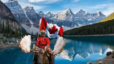 Photo of 5 cuốn sách hay về Canada tươi đẹp