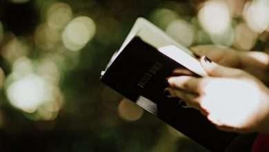 Photo of 5 cuốn sách hay về Chúa lôi cuốn bạn đọc