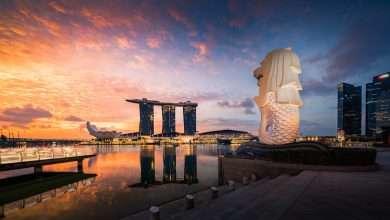 Photo of 7 quyển sách hay về Singapore đa sắc màu, đa văn hóa