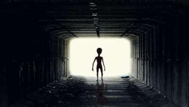 Photo of 4 cuốn sách hay về UFO vô cùng thú vị