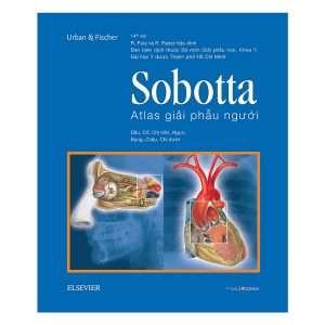sach sobotta atlas 300x300 11 quyển sách hay về y học được đón nhận rộng rãi trên toàn thế giới