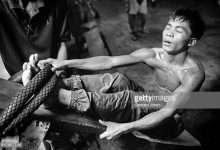 Photo of 4 phim hay về Manny Pacquiao kể câu chuyện nghị lực sống phi thường